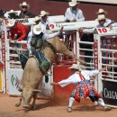 Rain or shine, the Calgary Stampede Rodeo is always a thrill
